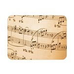 Music Notes Background Double Sided Flano Blanket (Mini)  35 x27 Blanket Front