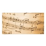 Music Notes Background Satin Shawl Front