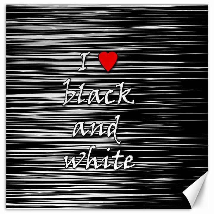 I love black and white 2 Canvas 20  x 20