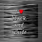 I love black and white 2 Mini Canvas 8  x 8  8  x 8  x 0.875  Stretched Canvas
