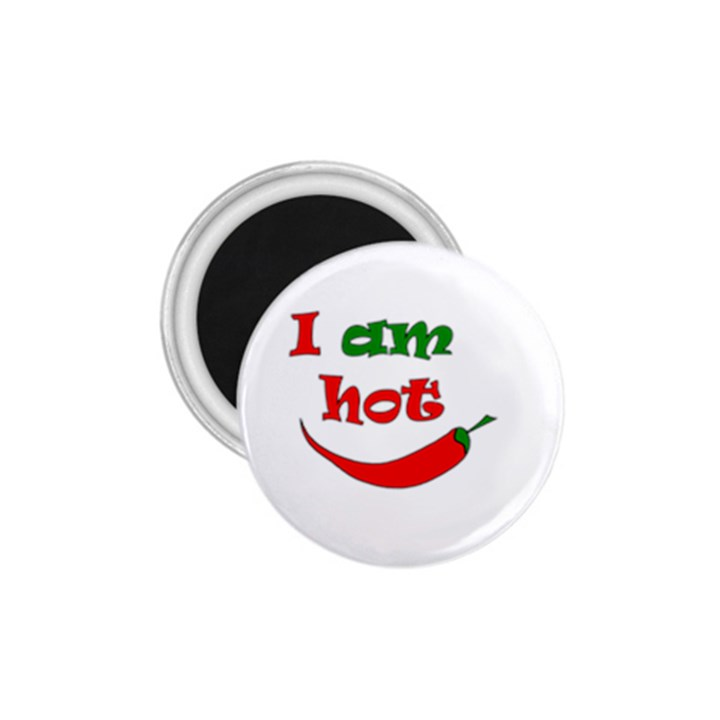 I am hot  1.75  Magnets
