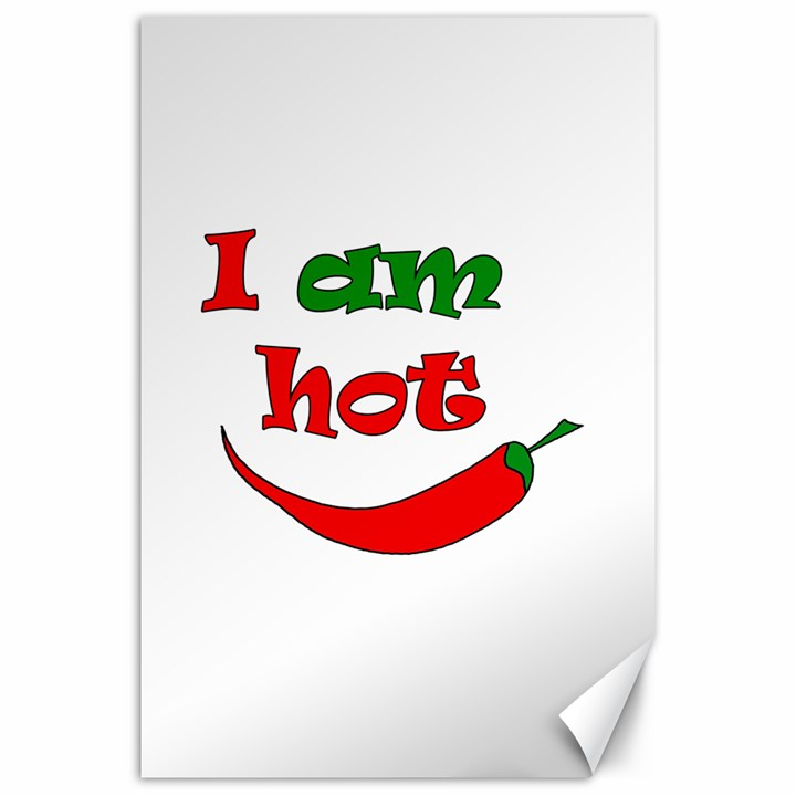 I am hot  Canvas 20  x 30