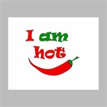 I am hot  Canvas 10  x 8  10  x 8  x 0.875  Stretched Canvas