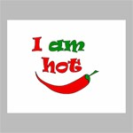 I am hot  Canvas 14  x 11  14  x 11  x 0.875  Stretched Canvas