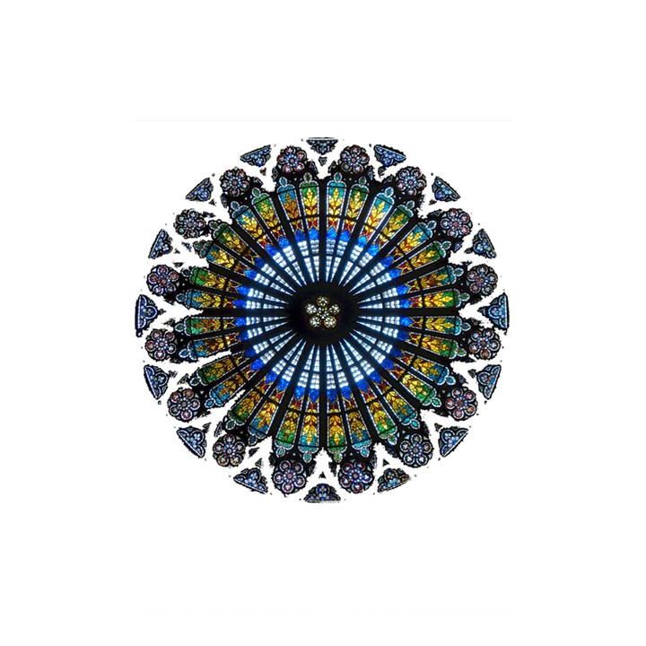 Rose Window Strasbourg Cathedral Shower Curtain 48  x 72  (Small)