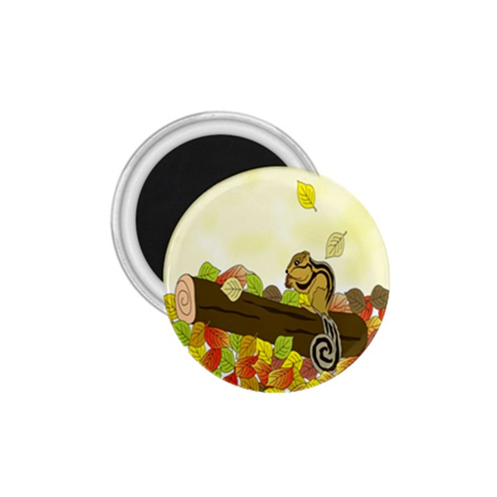 Squirrel  1.75  Magnets
