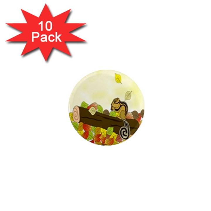 Squirrel  1  Mini Magnet (10 pack)