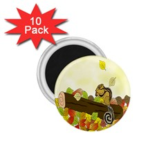 Squirrel  1.75  Magnets (10 pack)
