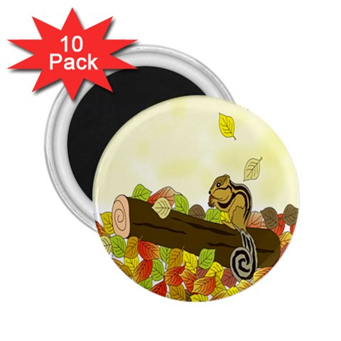 Squirrel  2.25  Magnets (10 pack)