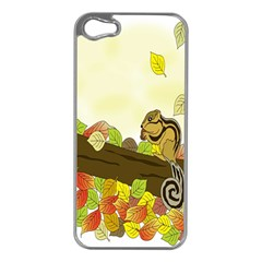 Squirrel  Apple iPhone 5 Case (Silver)