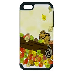Squirrel  Apple iPhone 5 Hardshell Case (PC+Silicone)