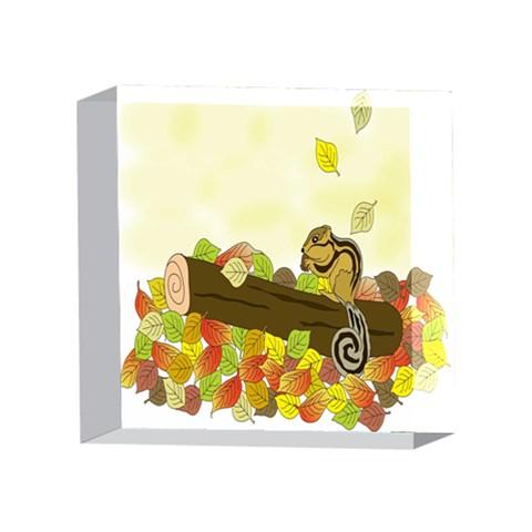 Squirrel  4 x 4  Acrylic Photo Blocks
