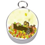 Squirrel  Silver Compasses Front