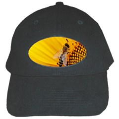 Sun Flower Bees Summer Garden Black Cap