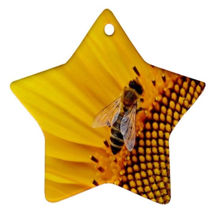 Sun Flower Bees Summer Garden Ornament (Star)