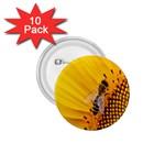 Sun Flower Bees Summer Garden 1.75  Buttons (10 pack) Front