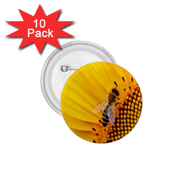 Sun Flower Bees Summer Garden 1.75  Buttons (10 pack)