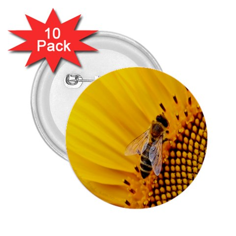 Sun Flower Bees Summer Garden 2.25  Buttons (10 pack)