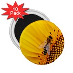 Sun Flower Bees Summer Garden 2.25  Magnets (10 pack)  Front