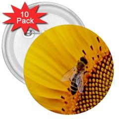 Sun Flower Bees Summer Garden 3  Buttons (10 pack)