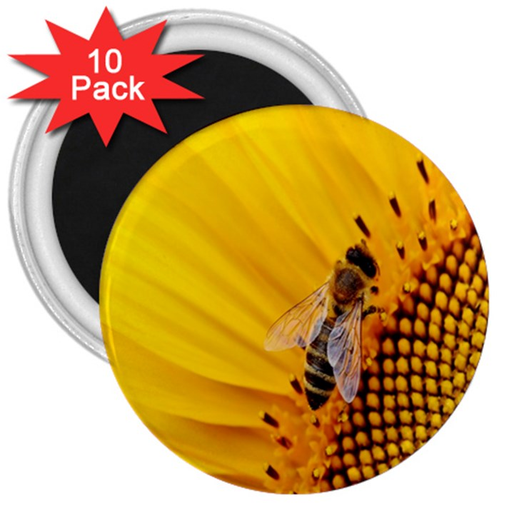 Sun Flower Bees Summer Garden 3  Magnets (10 pack)