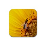 Sun Flower Bees Summer Garden Rubber Square Coaster (4 pack)  Front