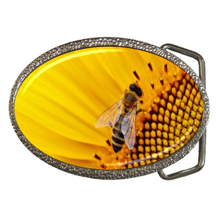 Sun Flower Bees Summer Garden Belt Buckles