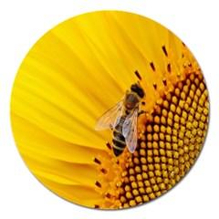 Sun Flower Bees Summer Garden Magnet 5  (Round)