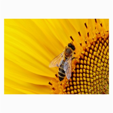 Sun Flower Bees Summer Garden Collage Prints