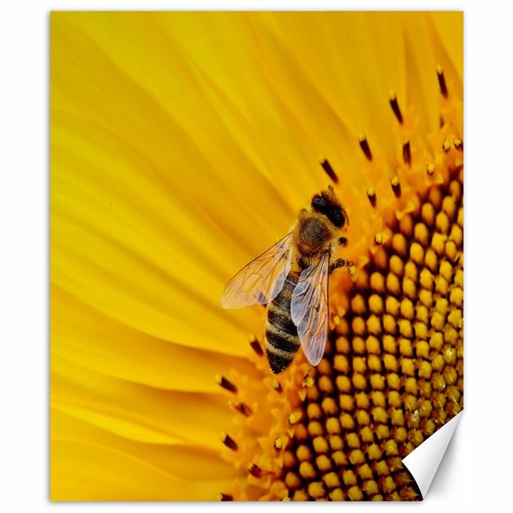 Sun Flower Bees Summer Garden Canvas 8  x 10