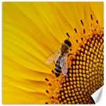 Sun Flower Bees Summer Garden Canvas 16  x 16   16 x16 Canvas - 1