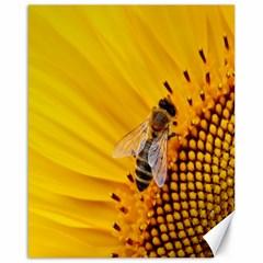 Sun Flower Bees Summer Garden Canvas 16  x 20