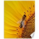 Sun Flower Bees Summer Garden Canvas 16  x 20   20 x16 Canvas - 1