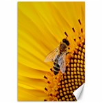 Sun Flower Bees Summer Garden Canvas 20  x 30   30 x20 Canvas - 1