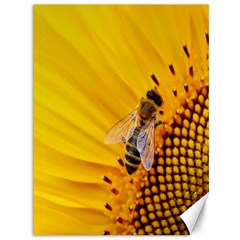 Sun Flower Bees Summer Garden Canvas 36  x 48
