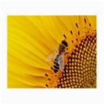Sun Flower Bees Summer Garden Small Glasses Cloth (2-Side) Front