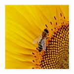 Sun Flower Bees Summer Garden Medium Glasses Cloth (2-Side) Front