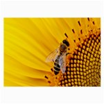 Sun Flower Bees Summer Garden Large Glasses Cloth (2-Side) Front
