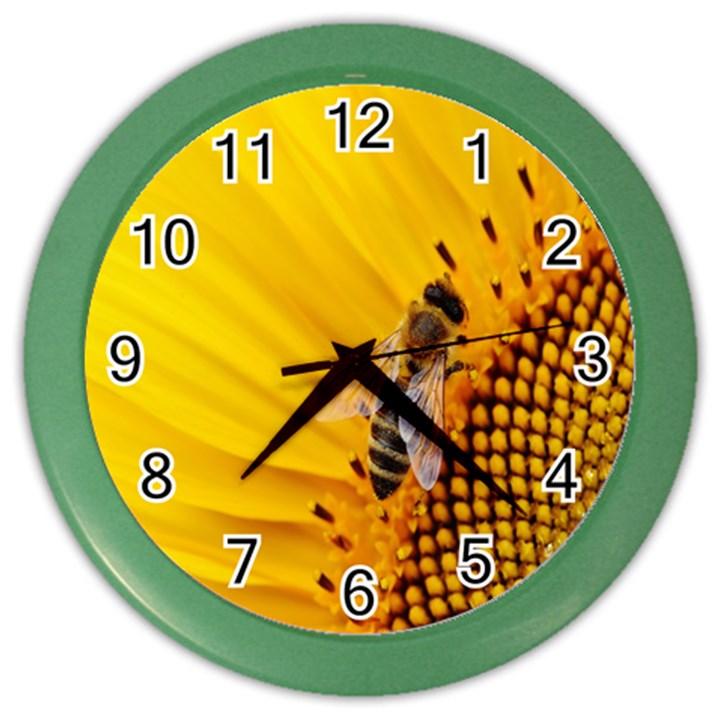 Sun Flower Bees Summer Garden Color Wall Clocks