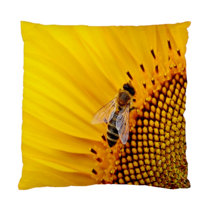 Sun Flower Bees Summer Garden Standard Cushion Case (One Side)