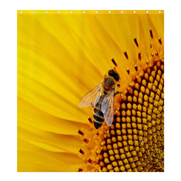 Sun Flower Bees Summer Garden Shower Curtain 66  x 72  (Large)