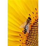 Sun Flower Bees Summer Garden 5.5  x 8.5  Notebooks Back Cover