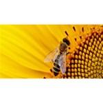 Sun Flower Bees Summer Garden Magic Photo Cubes Long Side 3