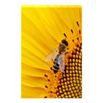 Sun Flower Bees Summer Garden Shower Curtain 48  x 72  (Small)  42.18 x64.8 Curtain