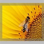 Sun Flower Bees Summer Garden Deluxe Canvas 24  x 20   24  x 20  x 1.5  Stretched Canvas