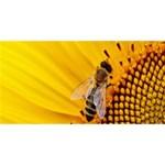 Sun Flower Bees Summer Garden Twin Hearts 3D Greeting Card (8x4) Back