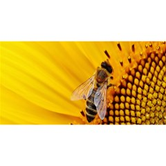 Sun Flower Bees Summer Garden YOU ARE INVITED 3D Greeting Card (8x4)