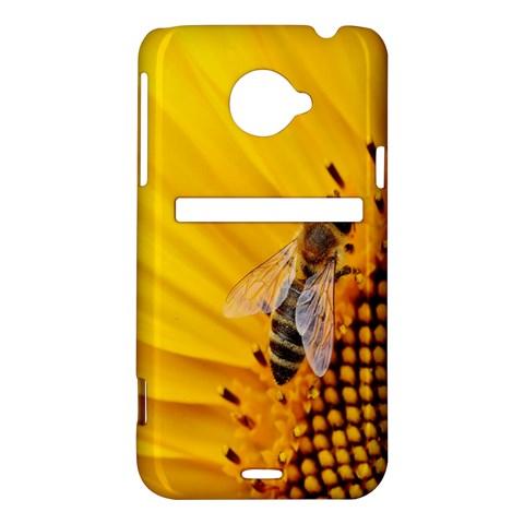 Sun Flower Bees Summer Garden HTC Evo 4G LTE Hardshell Case