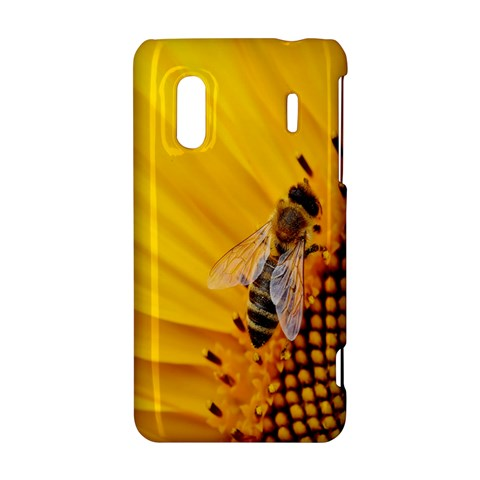 Sun Flower Bees Summer Garden HTC Evo Design 4G/ Hero S Hardshell Case