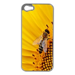 Sun Flower Bees Summer Garden Apple iPhone 5 Case (Silver)